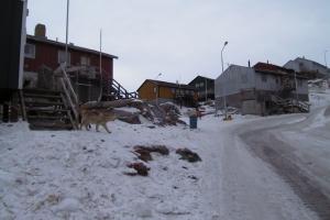 2000-Uummannaq_0010