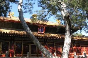 Beijing2007_0081