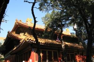 Beijing2007_0082