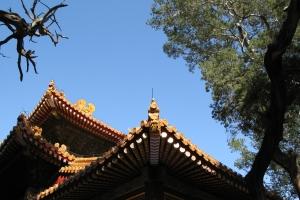 Beijing2007_0083