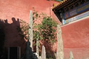 Beijing2007_0087