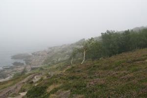 Bornholm2007_0035