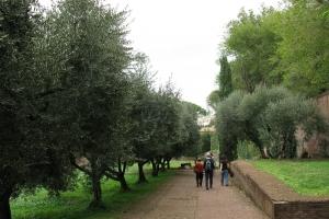 2008 Rom_0228