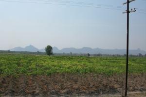 Thailand2008_0083