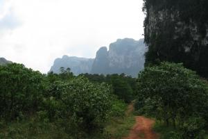 Thailand2008_0119