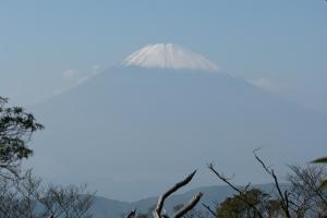 Japan2009_0161