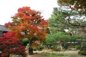 Japan2009_0202