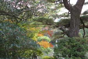 Japan2009_0457