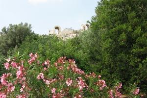 2011 Athen_0008