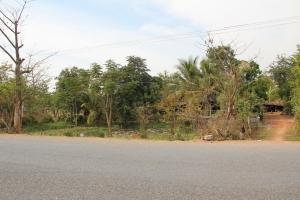 2011 Cambodia_0245