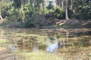 2011 Cambodia_0486