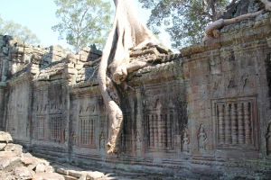 2011 Cambodia_0555