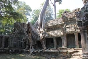 2011 Cambodia_0557