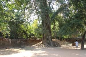 2011 Cambodia_0592