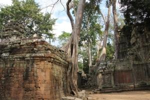 2011 Cambodia_0627