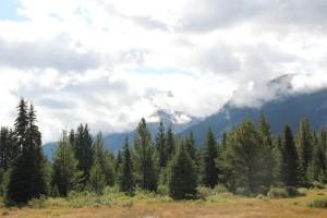 2011 Canada_0206