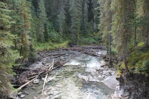 2011 Canada_0224