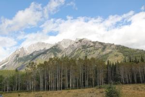 2011 Canada_0239