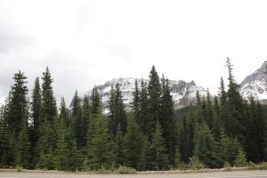 2011 Canada_0369