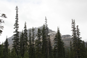 2011 Canada_0390