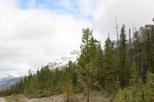 2011 Canada_0391