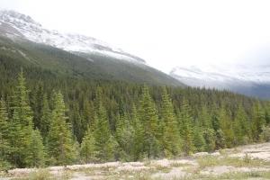 2011 Canada_0417