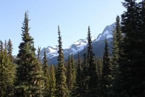 2011 Canada_0578