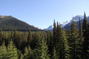 2011 Canada_0580