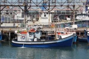 2012 Cape Town _0020