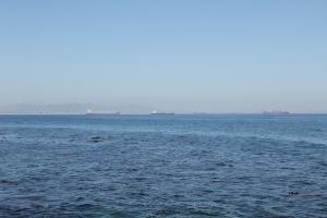 2012 Cape Town _0044