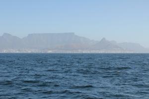2012 Cape Town _0062