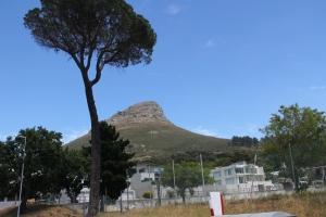 2012 Cape Town _0097