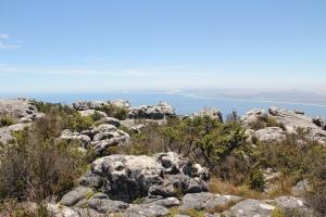 2012 Cape Town _0142