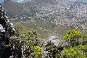 2012 Cape Town _0148