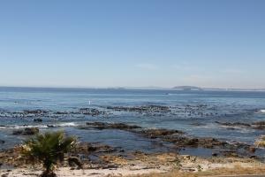 2012 Cape Town _0169