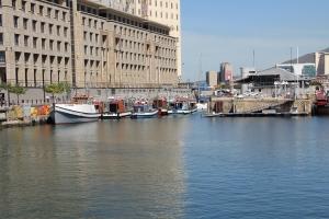 2012 Cape Town _0175