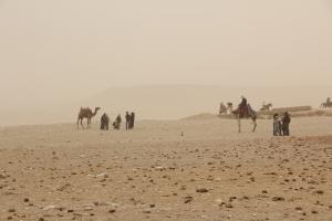 2012 Cairo_0053