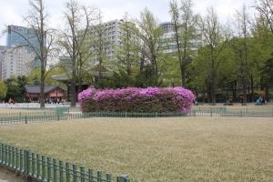 2013 SydKorea_0083