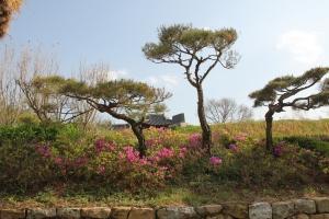 2013 SydKorea_0255