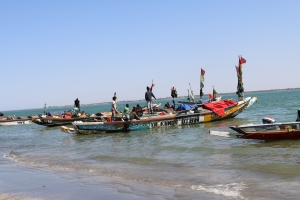 2014 Gambia_0031