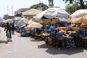 2014 Gambia_0062