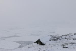 2014 Ilulissat_0292