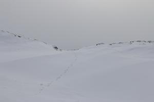 2014 Ilulissat_0301