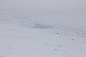 2014 Ilulissat_0312