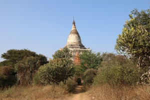 2016 Myanmar_0172