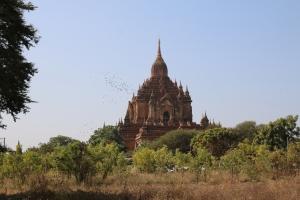 2016 Myanmar_0231