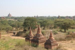 2016 Myanmar_0259