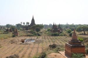 2016 Myanmar_0260