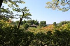 Japan-2017_554
