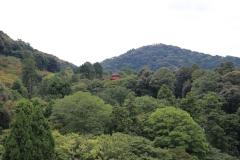 Japan-2017_617